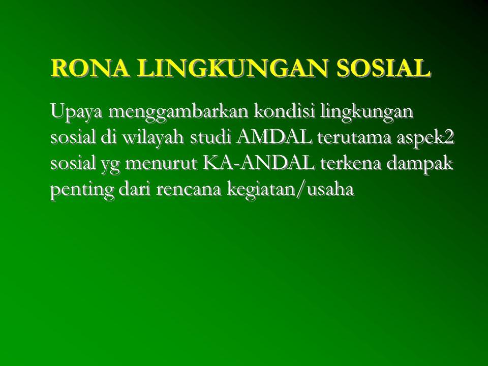 RONA LINGKUNGAN SOSIAL Upaya menggambarkan kondisi lingkungan sosial di wilayah studi AMDAL terutama aspek2 sosial yg menurut KA-ANDAL terkena dampak