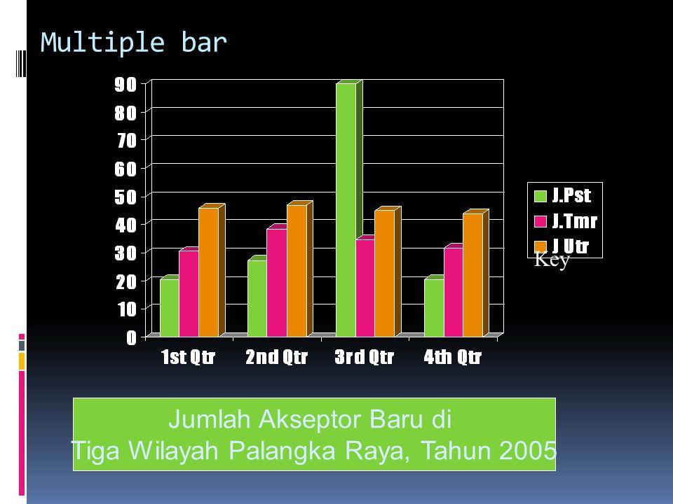Multiple bar Key Jumlah Akseptor Baru di Tiga Wilayah Palangka Raya, Tahun 2005