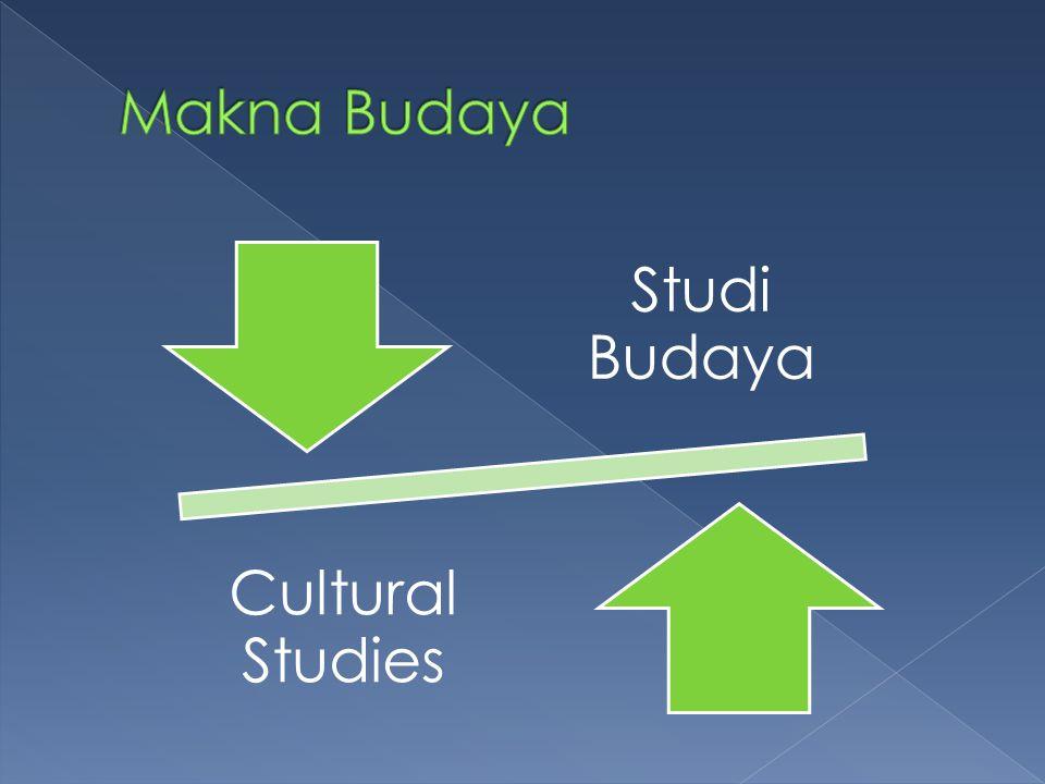  Ilmu yang mempelajari budaya kontemporer  Adalah suatu arena interdisipliner untuk menguji hubungan antara kebudayaan dan kekuasaan  Terkait dengan semua praktik, institusi yang tertanam dalam rutinitas dan prilaku masyarakat  Bentuk kekuasaan yang dieksplor termasuk gender, ras, kelas, kolonialisme dll  Arena institusionalnya adalah perguruan tinggi