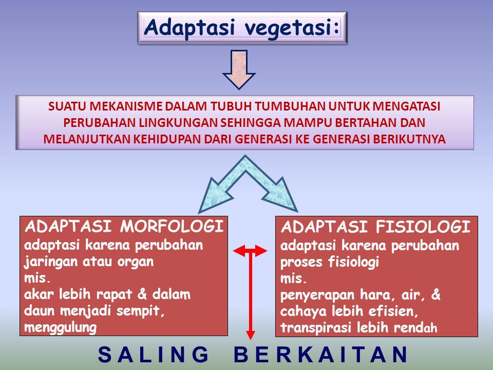Adaptasi vegetasi: SUATU MEKANISME DALAM TUBUH TUMBUHAN UNTUK MENGATASI PERUBAHAN LINGKUNGAN SEHINGGA MAMPU BERTAHAN DAN MELANJUTKAN KEHIDUPAN DARI GENERASI KE GENERASI BERIKUTNYA ADAPTASI MORFOLOGI adaptasi karena perubahan jaringan atau organ mis.