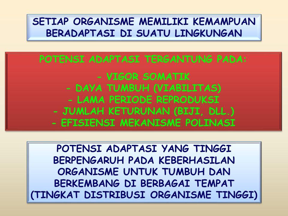 SETIAP ORGANISME MEMILIKI KEMAMPUAN BERADAPTASI DI SUATU LINGKUNGAN POTENSI ADAPTASI TERGANTUNG PADA: - VIGOR SOMATIK - DAYA TUMBUH (VIABILITAS) - LAMA PERIODE REPRODUKSI - JUMLAH KETURUNAN (BIJI, DLL.) - EFISIENSI MEKANISME POLINASI POTENSI ADAPTASI TERGANTUNG PADA: - VIGOR SOMATIK - DAYA TUMBUH (VIABILITAS) - LAMA PERIODE REPRODUKSI - JUMLAH KETURUNAN (BIJI, DLL.) - EFISIENSI MEKANISME POLINASI POTENSI ADAPTASI YANG TINGGI BERPENGARUH PADA KEBERHASILAN ORGANISME UNTUK TUMBUH DAN BERKEMBANG DI BERBAGAI TEMPAT (TINGKAT DISTRIBUSI ORGANISME TINGGI)
