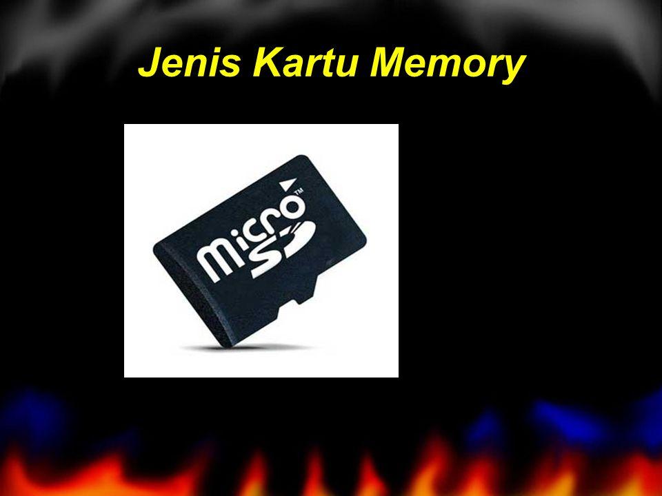 Jenis Kartu Memory