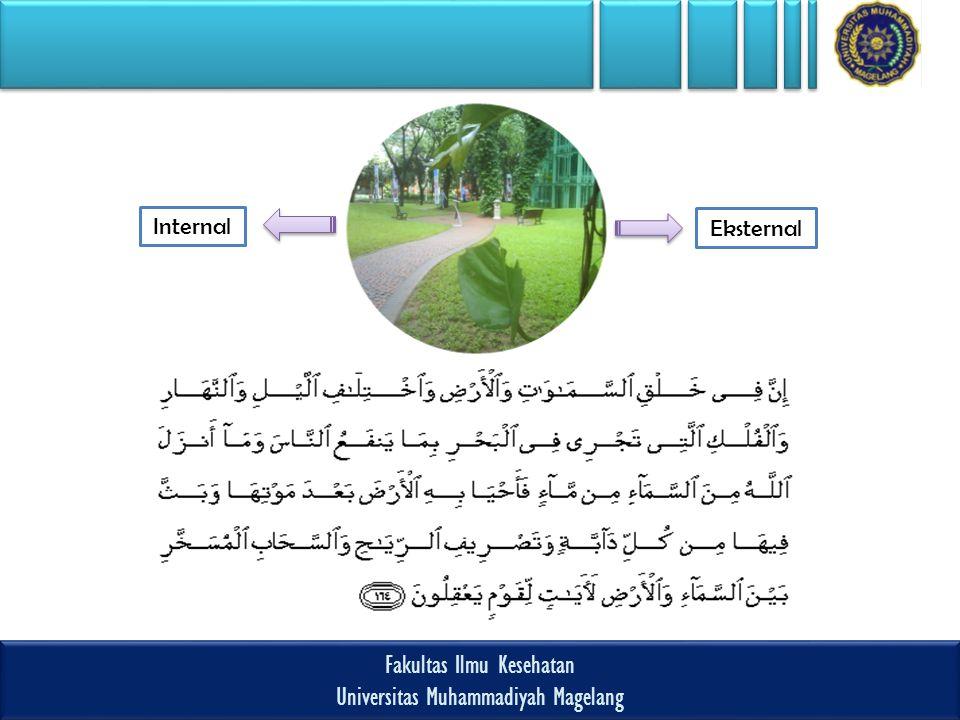 Fakultas Ilmu Kesehatan Universitas Muhammadiyah Magelang Fakultas Ilmu Kesehatan Universitas Muhammadiyah Magelang Internal Eksternal
