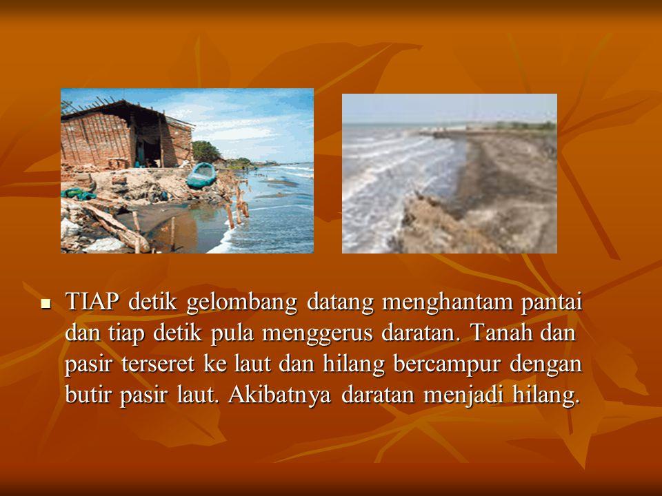 TIAP detik gelombang datang menghantam pantai dan tiap detik pula menggerus daratan. Tanah dan pasir terseret ke laut dan hilang bercampur dengan buti
