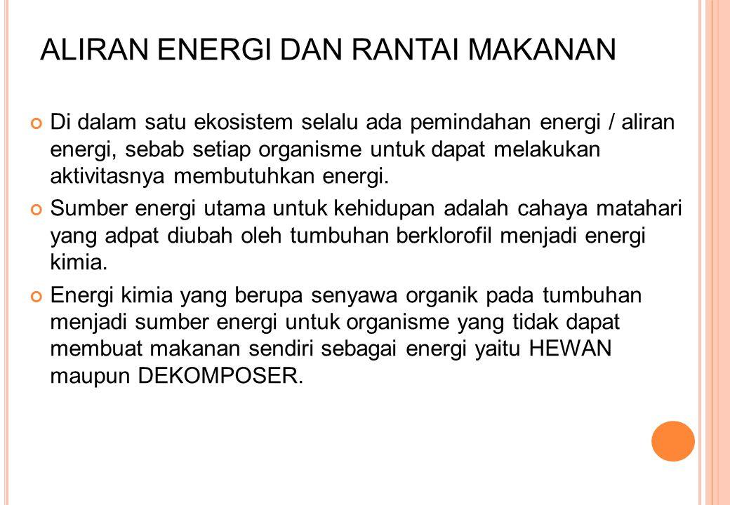 ALIRAN ENERGI DAN RANTAI MAKANAN Di dalam satu ekosistem selalu ada pemindahan energi / aliran energi, sebab setiap organisme untuk dapat melakukan ak