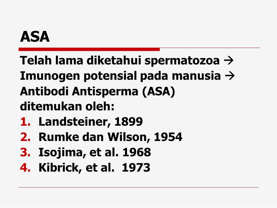 ASA Telah lama diketahui spermatozoa  Imunogen potensial pada manusia  Antibodi Antisperma (ASA) ditemukan oleh: 1.Landsteiner, 1899 2.Rumke dan Wil
