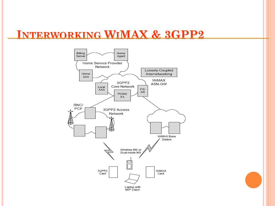 I NTERWORKING W I MAX & 3GPP2
