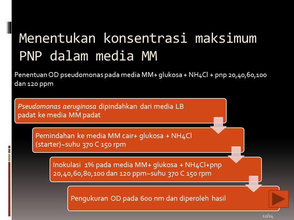 Menentukan konsentrasi maksimum PNP dalam media MM Pseudomonas aeruginosa dipindahkan dari media LB padat ke media MM padat Pemindahan ke media MM cai