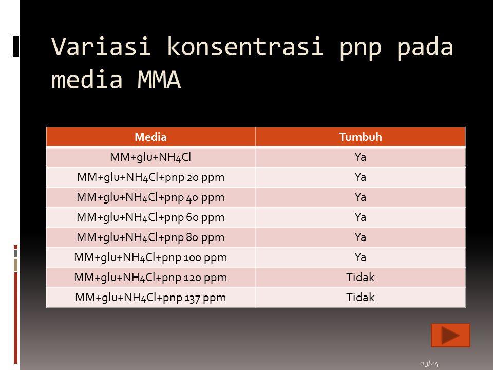 Variasi konsentrasi pnp pada media MMA MediaTumbuh MM+glu+NH 4 ClYa MM+glu+NH 4 Cl+pnp 20 ppmYa MM+glu+NH 4 Cl+pnp 40 ppmYa MM+glu+NH 4 Cl+pnp 60 ppmY
