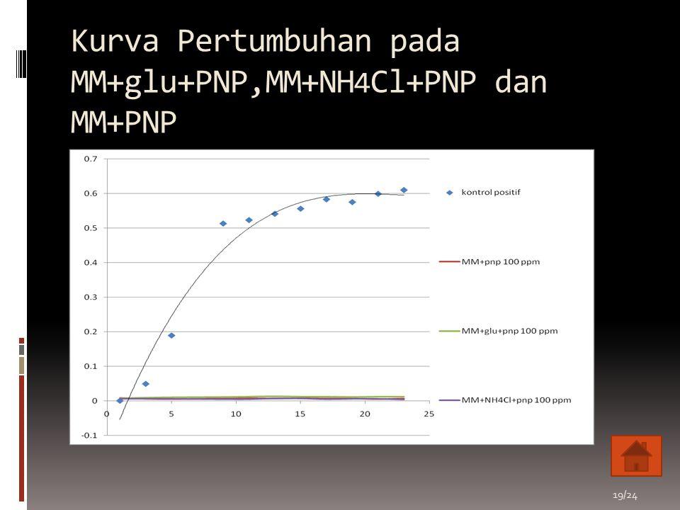Kurva Pertumbuhan pada MM+glu+PNP,MM+NH 4 Cl+PNP dan MM+PNP 19/24