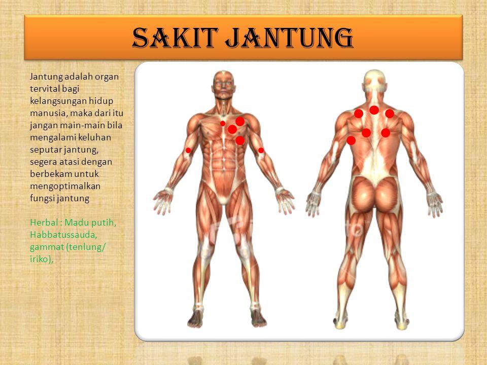 GOUT Gout adalah penyakit yang disebabkan tingginya tingkat uric acid, hal ini terjadi karena ada kelainan fungsi ginjal, kurangnya konsumsi air putih