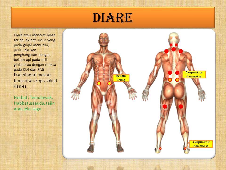 PURUNCLE Puruncle atau jerawat adalah gejala kelainan fungsi darah dan liver. Perlu memperhatikan pola makan dan istirahat yang teratur dan sehat. Per