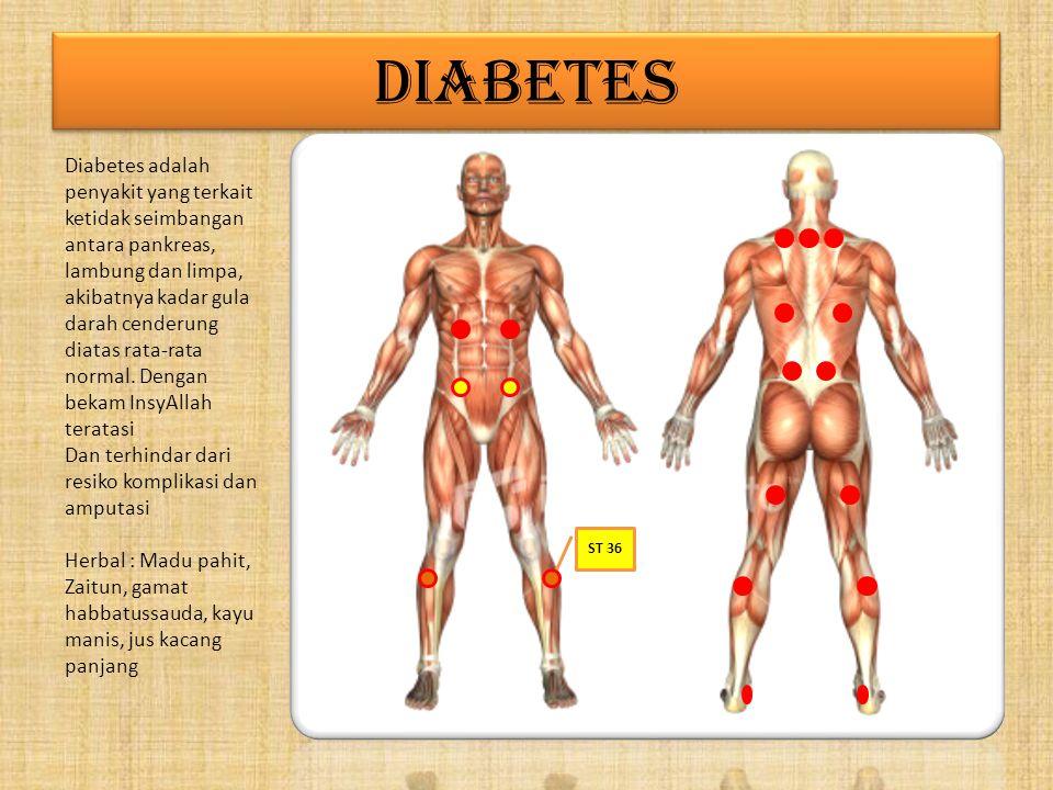 DIABETES Diabetes adalah penyakit yang terkait ketidak seimbangan antara pankreas, lambung dan limpa, akibatnya kadar gula darah cenderung diatas rata-rata normal.