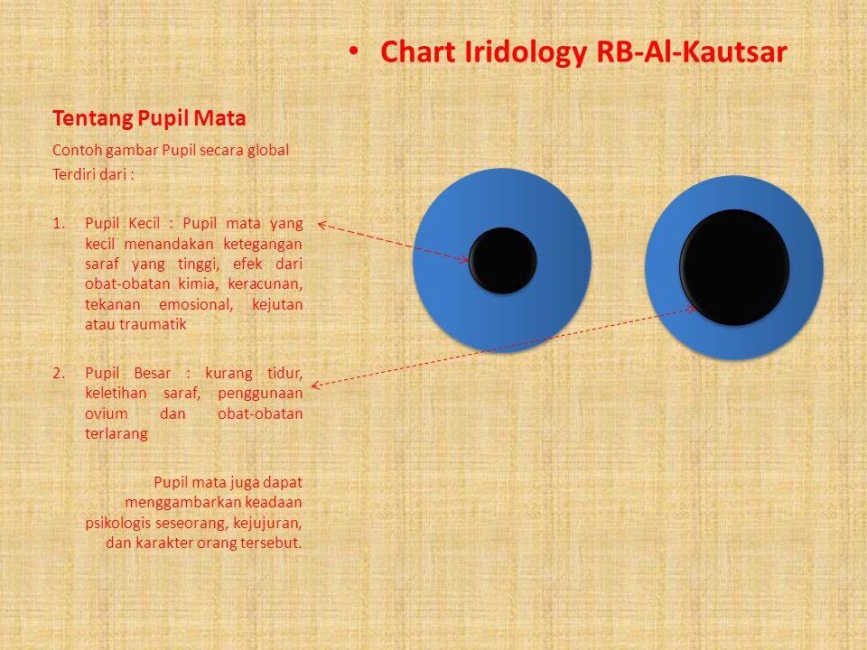 Mengenali iris mata Peta Iridologi RB-Al-Kautsar PUPIL MATA ANW (AUTONOMIC NERVE WREATH) IRIS MATA SKLERA MATA