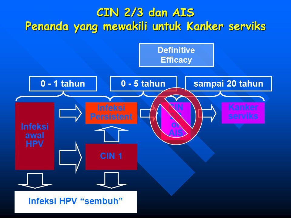 CIN 2/3 dan AIS Penanda yang mewakili untuk Kanker serviks 0 - 1 tahun0 - 5 tahunsampai 20 tahun Infeksi awal HPV Infeksi Persistent CIN 2/3 or AIS Ka