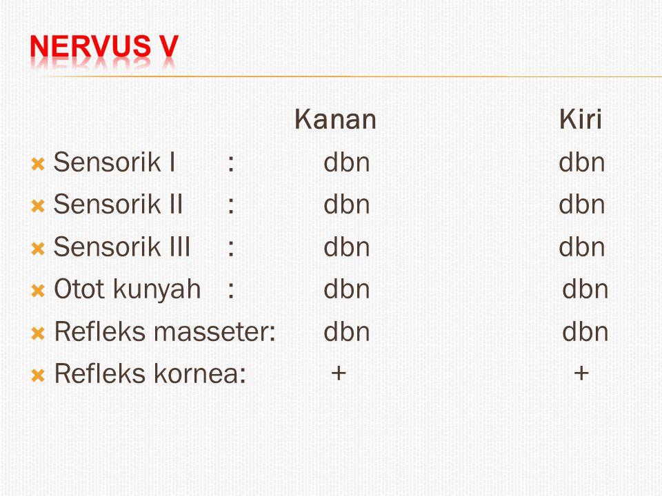 KananKiri  Sensorik I: dbndbn  Sensorik II: dbndbn  Sensorik III: dbndbn  Otot kunyah: dbn dbn  Refleks masseter: dbn dbn  Refleks kornea: + +