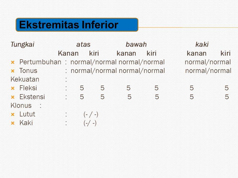 Tungkai atas bawah kaki Kanan kiri kanan kiri kanan kiri  Pertumbuhan : normal/normal normal/normal normal/normal  Tonus : normal/normal normal/norm