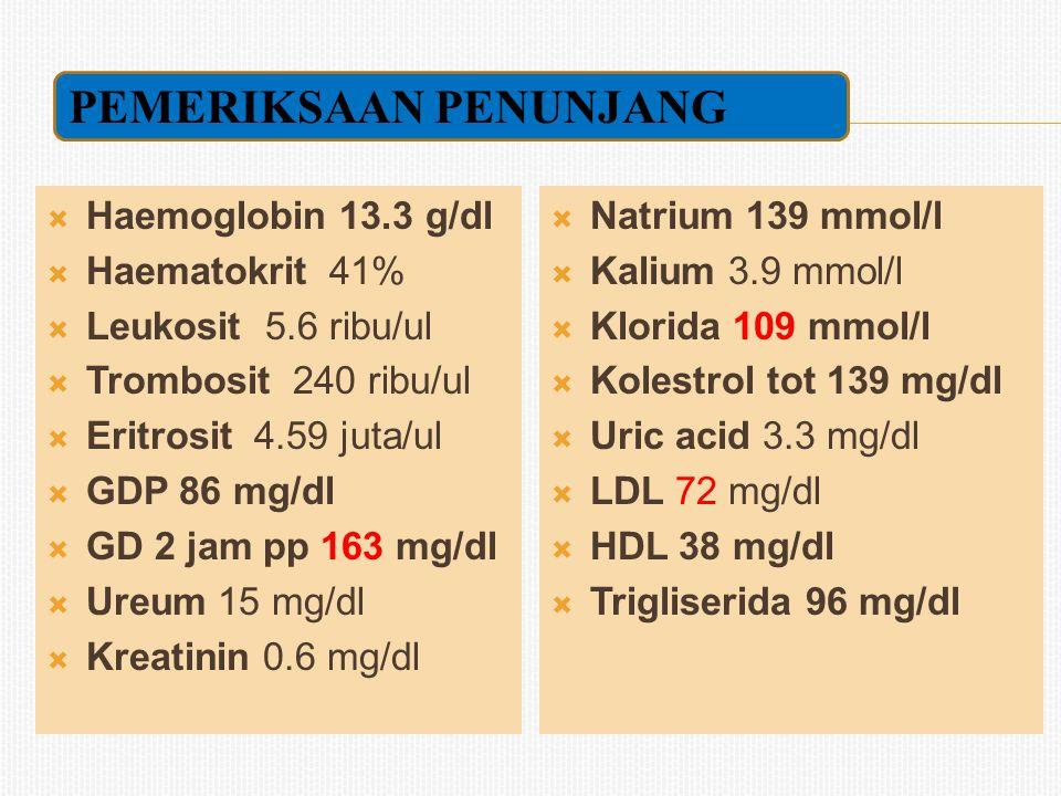  Haemoglobin 13.3 g/dl  Haematokrit 41%  Leukosit 5.6 ribu/ul  Trombosit 240 ribu/ul  Eritrosit 4.59 juta/ul  GDP 86 mg/dl  GD 2 jam pp 163 mg/dl  Ureum 15 mg/dl  Kreatinin 0.6 mg/dl  Natrium 139 mmol/l  Kalium 3.9 mmol/l  Klorida 109 mmol/l  Kolestrol tot 139 mg/dl  Uric acid 3.3 mg/dl  LDL 72 mg/dl  HDL 38 mg/dl  Trigliserida 96 mg/dl PEMERIKSAAN PENUNJANG