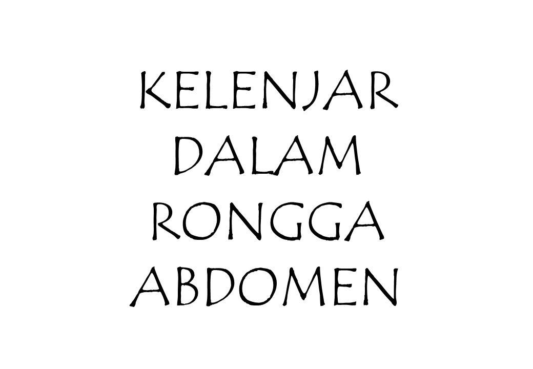 Kelenjar dalam rongga abdomen dibagi : KELENJAR EKSOKRIN –Hepar –Pancreas –Empedu KELENJAR ENDOKRIN –Pancreas –Adrenal