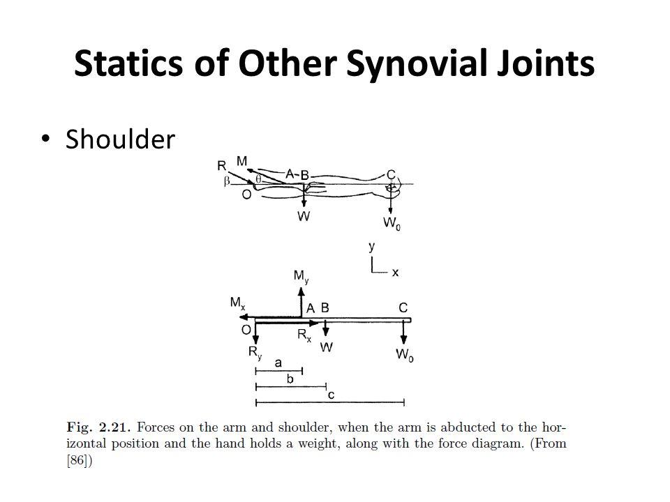 Statics of Other Synovial Joints Shoulder