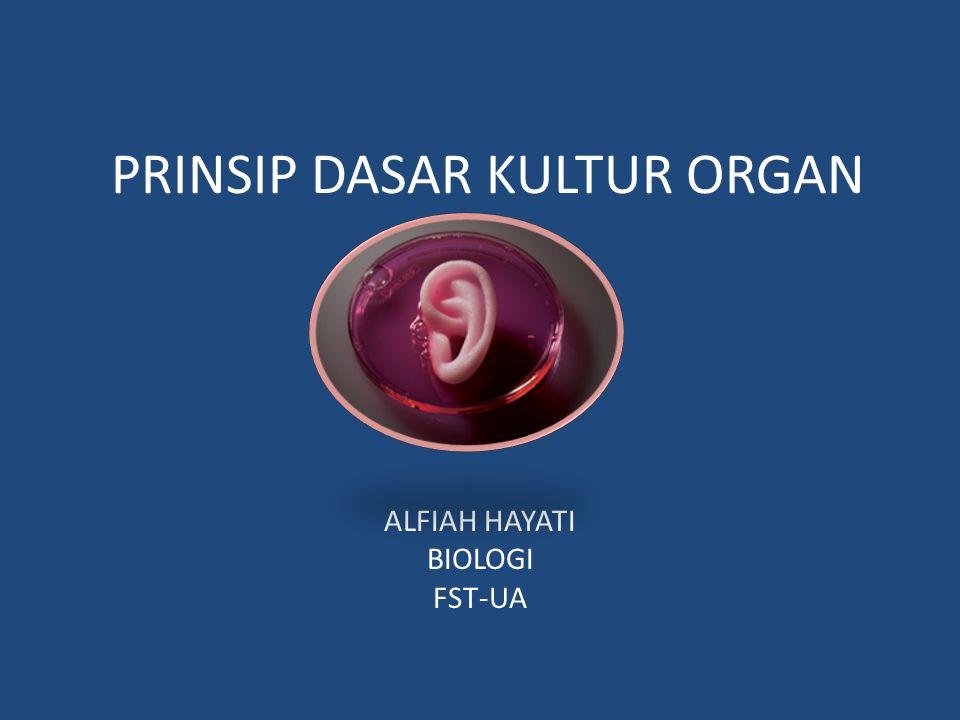 Kultur organ Pengembangan dari kultur sel dan jaringan Dilakukan secara in vitro & in vivo Tujuan mempertahankan struktur sel dan jaringan menghindari kerusakan jaringan Medianya = kultur jaringan.