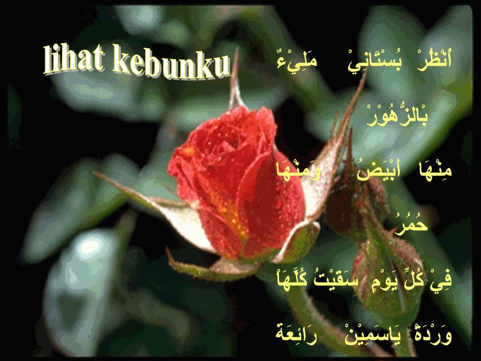 KT. BENDA KT. KERJA HURUF الإِسْمُ الفِعْلُ الحَرْفُ KALIMAH