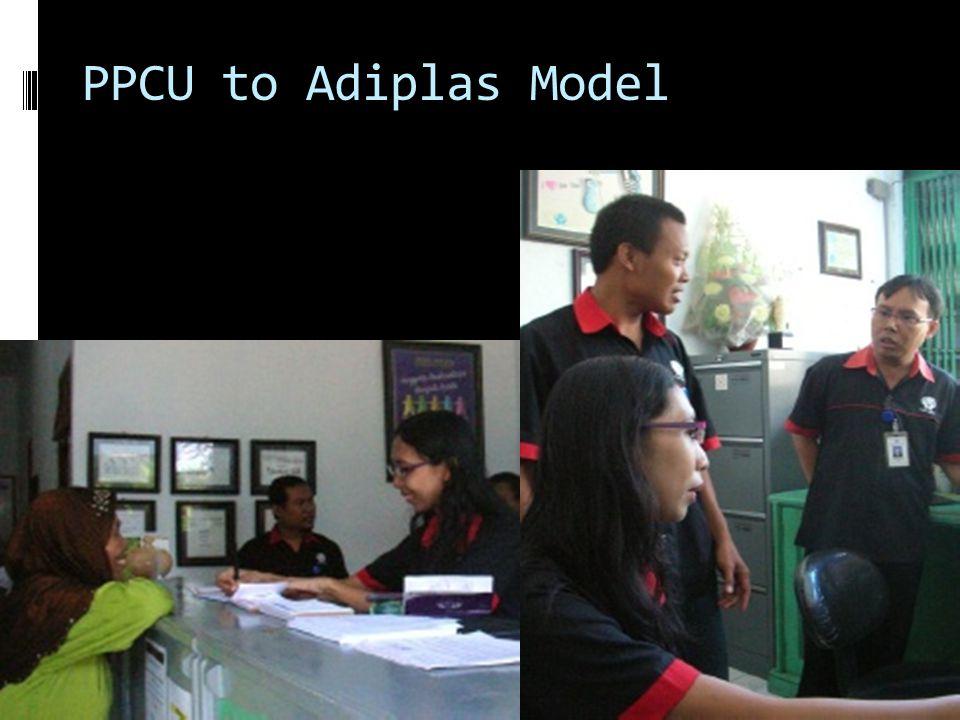 PPCU to Adiplas Model