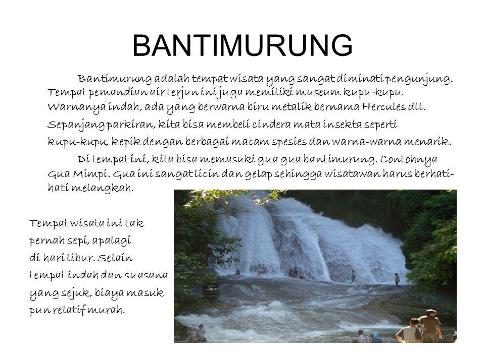 BANTIMURUNG Bantimurung adalah tempat wisata yang sangat diminati pengunjung. Tempat pemandian air terjun ini juga memiliki museum kupu-kupu. Warnanya