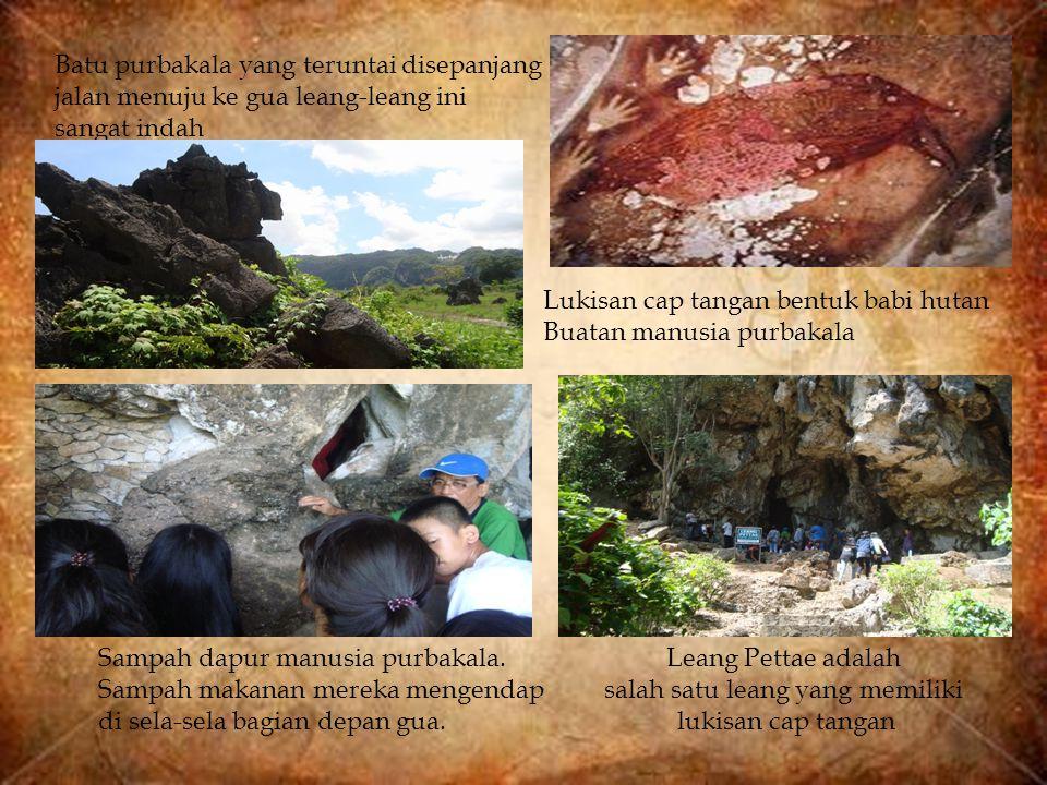 Batu purbakala yang teruntai disepanjang jalan menuju ke gua leang-leang ini sangat indah Lukisan cap tangan bentuk babi hutan Buatan manusia purbakal