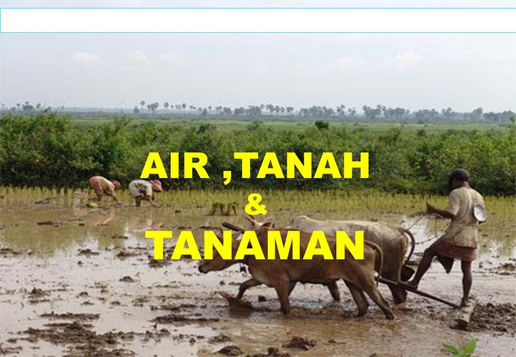 1 AIR,TANAH & TANAMAN (Prof.Dr.Ir.Soemarno, M.S.) Oktober 2008