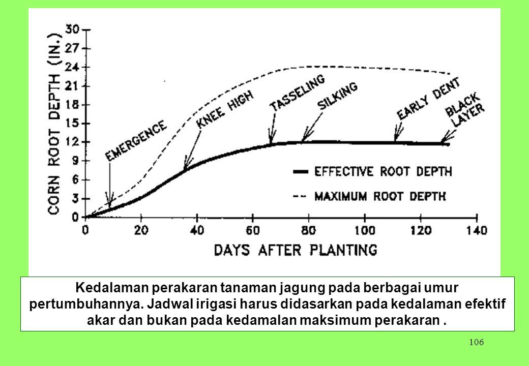 106 Kedalaman perakaran tanaman jagung pada berbagai umur pertumbuhannya. Jadwal irigasi harus didasarkan pada kedalaman efektif akar dan bukan pada k