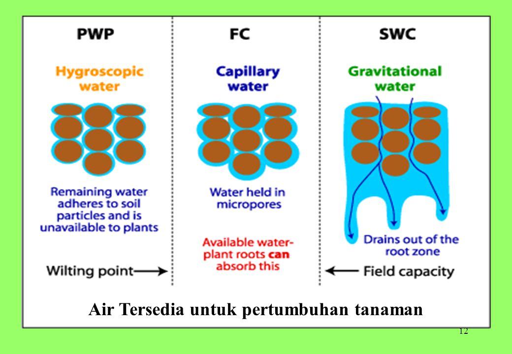 12 Air Tersedia untuk pertumbuhan tanaman