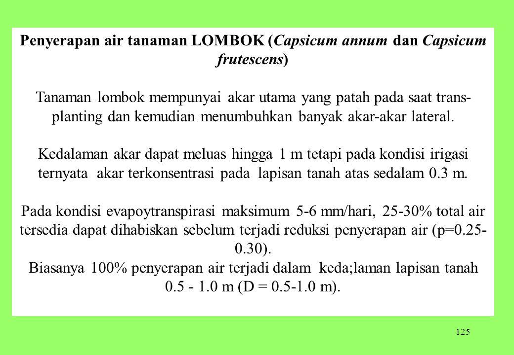 125 Penyerapan air tanaman LOMBOK (Capsicum annum dan Capsicum frutescens) Tanaman lombok mempunyai akar utama yang patah pada saat trans planting da