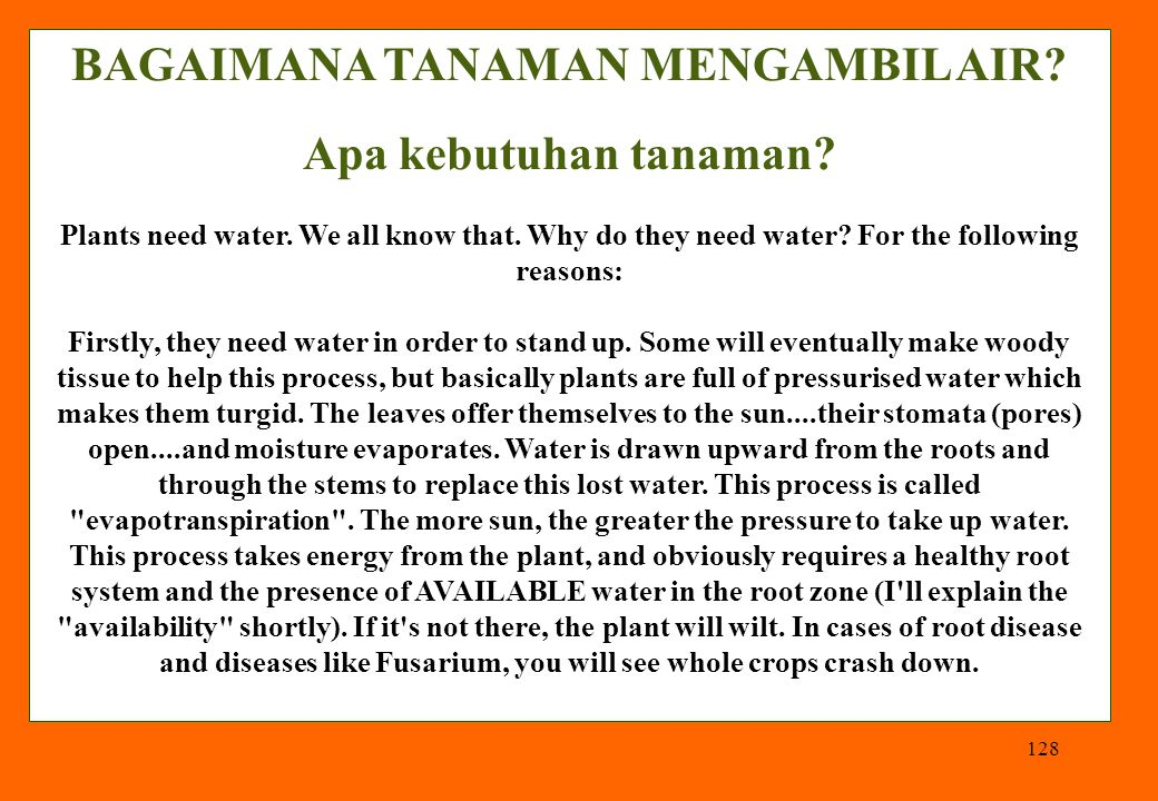 128 BAGAIMANA TANAMAN MENGAMBIL AIR? Apa kebutuhan tanaman? Plants need water. We all know that. Why do they need water? For the following reasons: Fi