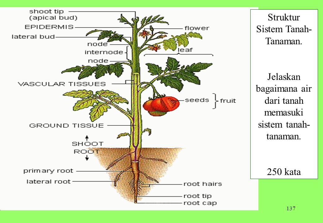 137 Struktur Sistem Tanah- Tanaman. Jelaskan bagaimana air dari tanah memasuki sistem tanah- tanaman. 250 kata