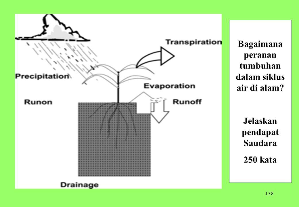 138 Bagaimana peranan tumbuhan dalam siklus air di alam? Jelaskan pendapat Saudara 250 kata