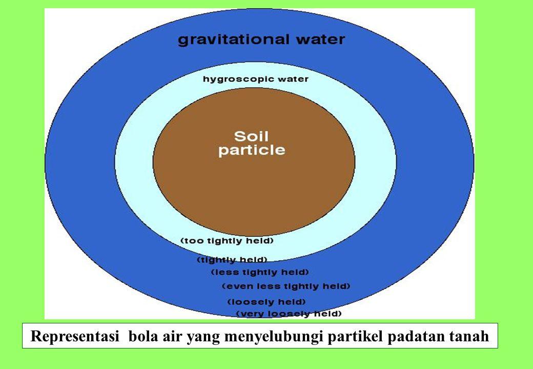 16 Representasi bola air yang menyelubungi partikel padatan tanah