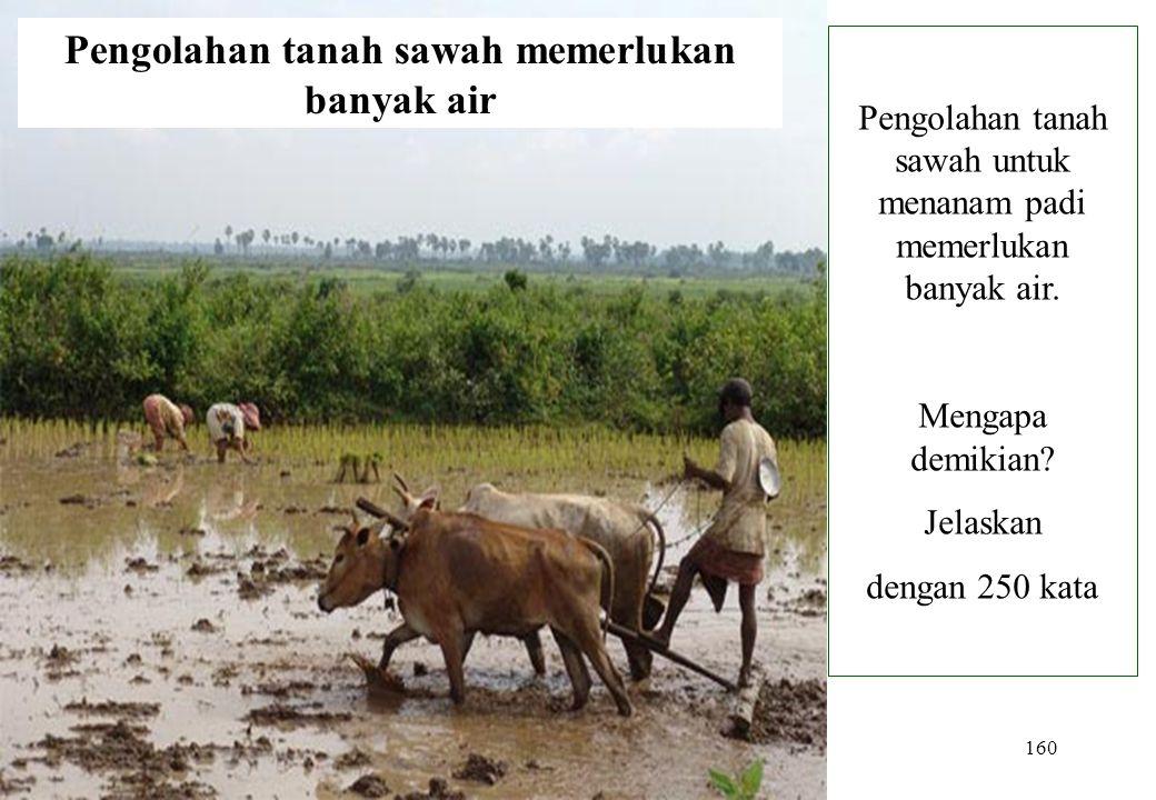 160 Pengolahan tanah sawah memerlukan banyak air Pengolahan tanah sawah untuk menanam padi memerlukan banyak air. Mengapa demikian? Jelaskan dengan 25