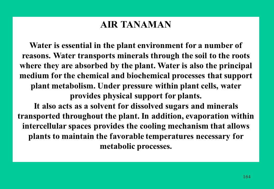 164 AIR TANAMAN Water is essential in the plant environment for a number of reasons.