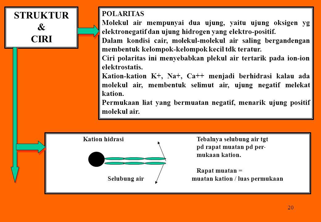 20 STRUKTUR & CIRI POLARITAS Molekul air mempunyai dua ujung, yaitu ujung oksigen yg elektronegatif dan ujung hidrogen yang elektro-positif. Dalam kon