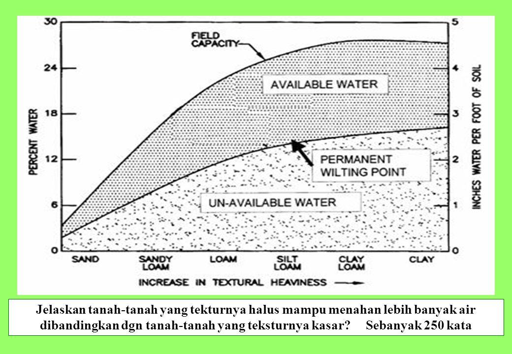 30 Jelaskan tanah-tanah yang tekturnya halus mampu menahan lebih banyak air dibandingkan dgn tanah-tanah yang teksturnya kasar? Sebanyak 250 kata