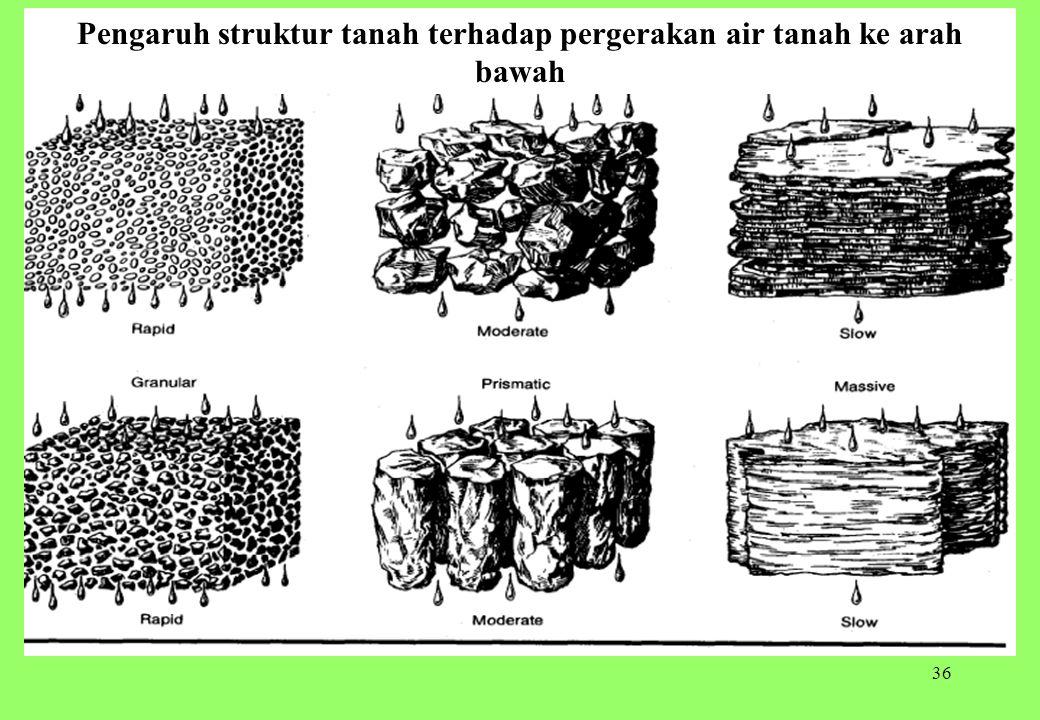 36 Pengaruh struktur tanah terhadap pergerakan air tanah ke arah bawah