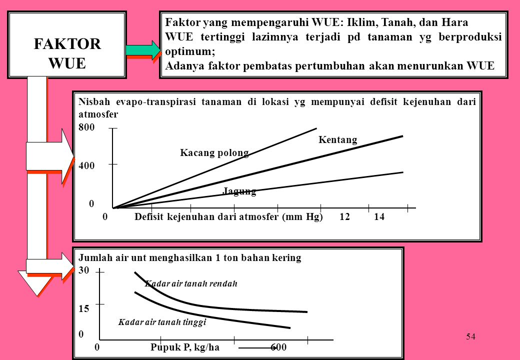 54 FAKTOR WUE Faktor yang mempengaruhi WUE: Iklim, Tanah, dan Hara WUE tertinggi lazimnya terjadi pd tanaman yg berproduksi optimum; Adanya faktor pem
