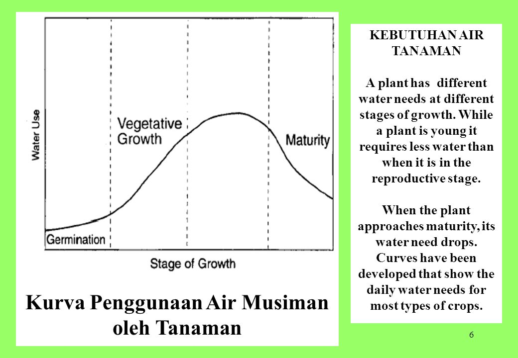 6 Kurva Penggunaan Air Musiman oleh Tanaman KEBUTUHAN AIR TANAMAN A plant has different water needs at different stages of growth. While a plant is yo