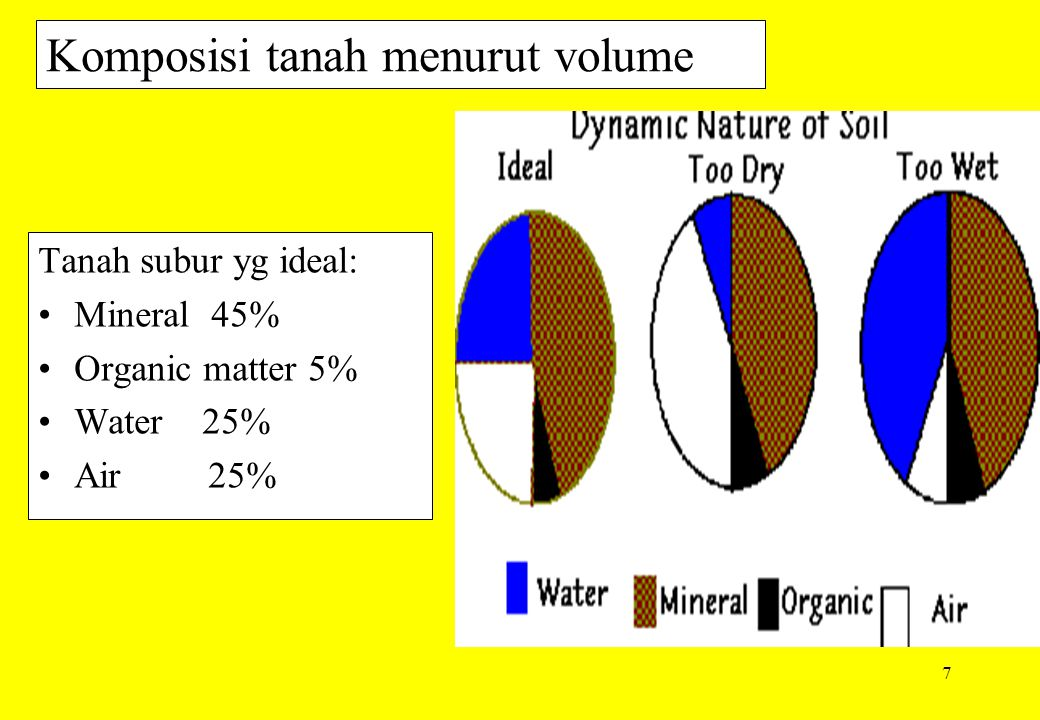 8 Tiga komponen tanah The soil system is composed of three major components: solid particles (minerals and organic matter), water with various dissolved chemicals, and air.
