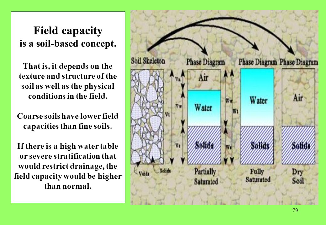 79 Field capacity is a soil-based concept.