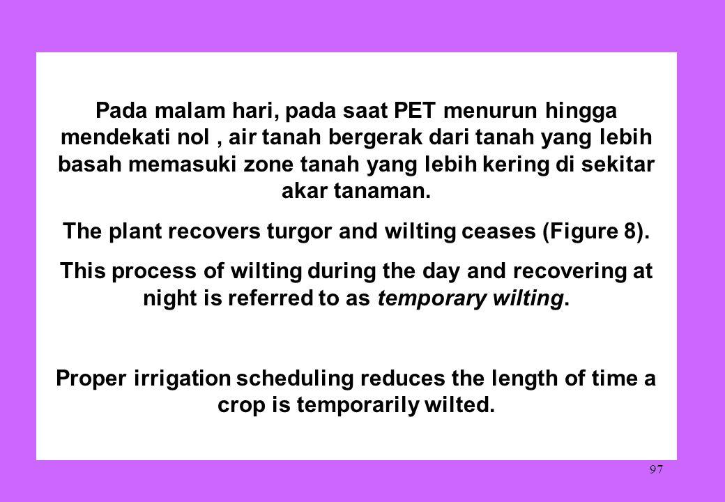 97 Pada malam hari, pada saat PET menurun hingga mendekati nol, air tanah bergerak dari tanah yang lebih basah memasuki zone tanah yang lebih kering d