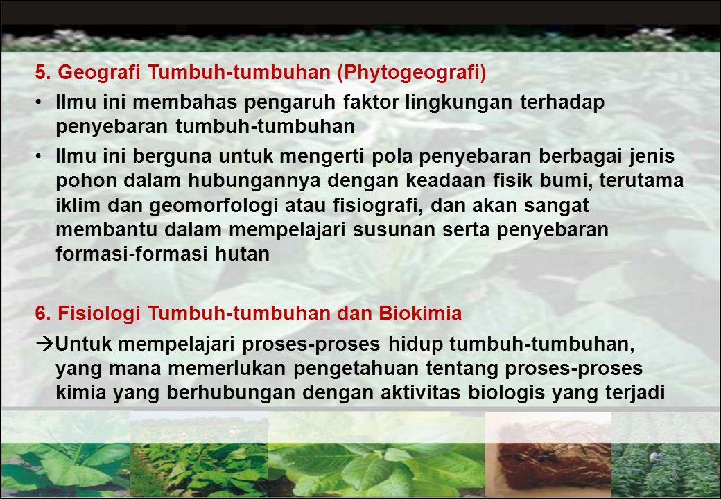 Hutan Musim Hutan Hujan Tropis Savana Steppa / Padang Rumput