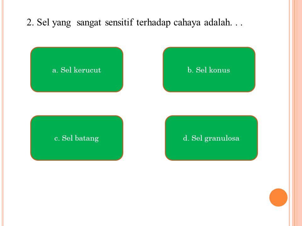 2. Sel yang sangat sensitif terhadap cahaya adalah... a. Sel kerucut c. Sel batangd. Sel granulosa b. Sel konus