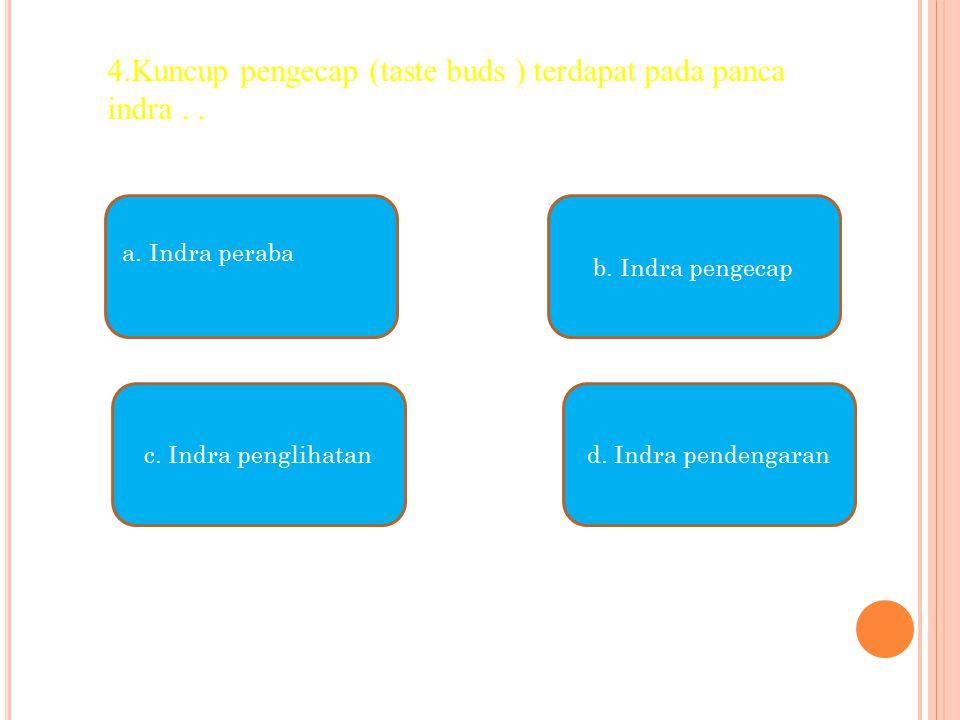 a. Indra peraba c. Indra penglihatand. Indra pendengaran b. Indra pengecap 4.Kuncup pengecap (taste buds ) terdapat pada panca indra..